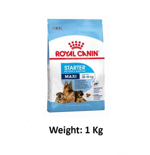 royal canin maxi starter 1kg dog buy at. Black Bedroom Furniture Sets. Home Design Ideas