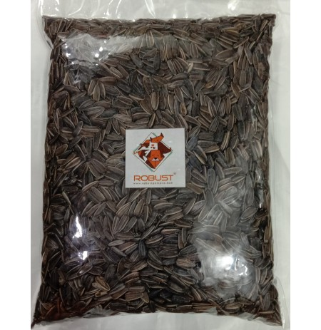 Robust Sunflower Seed 500 Gm