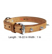 Super Dog Spike Leather Collar 1 Inch