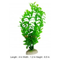 Aquascaper Aquarium Plant Lysimachia Green Medium