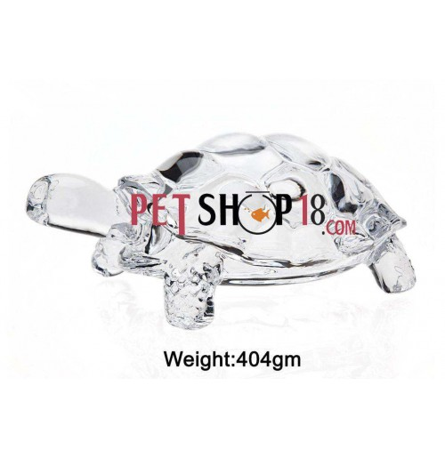 Crystal Turtle Large