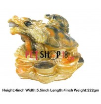 Golden Dragon With Small Turtle