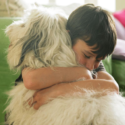 Responsible Pet Ownership For Kids
