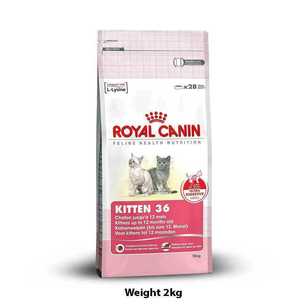 royal canin mini adult 4kg dog buy at. Black Bedroom Furniture Sets. Home Design Ideas