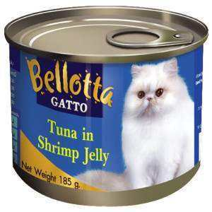 Cat Food Best Quality At Discounted Price Only At