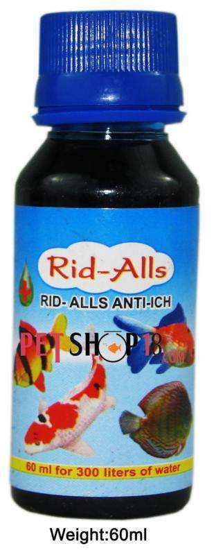 Fishes Best Quality At Discounted Price Only At Petshop18 Com