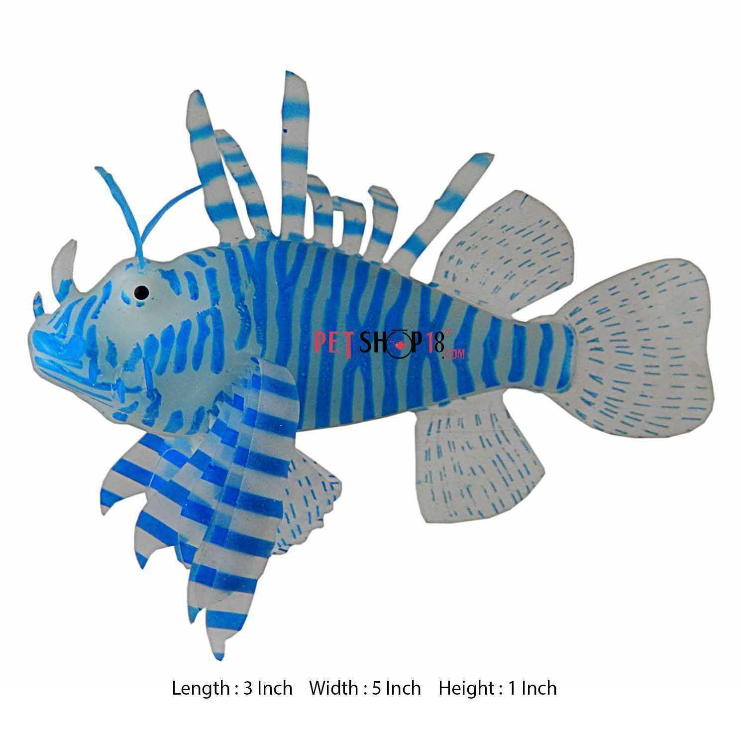Fish aquarium in chandigarh - Blue Lion Fish Aquarium