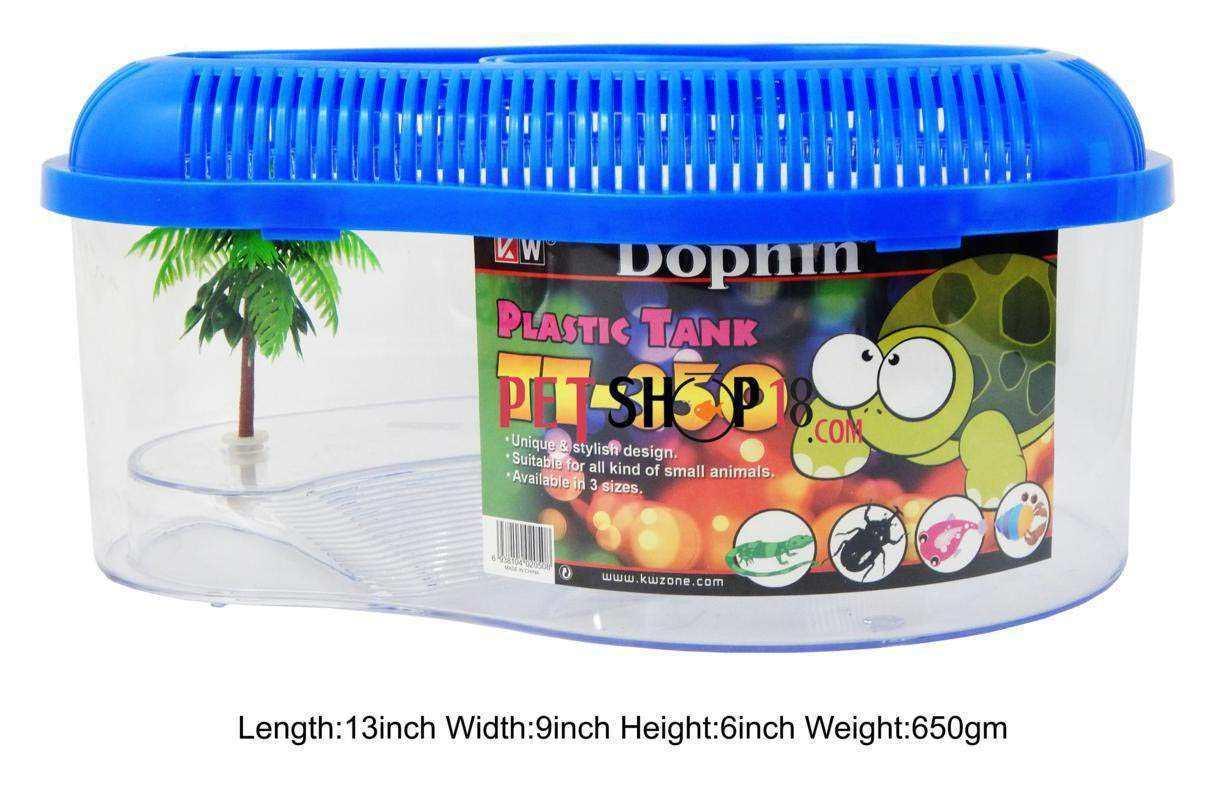 Fish aquarium online delhi - Dophin