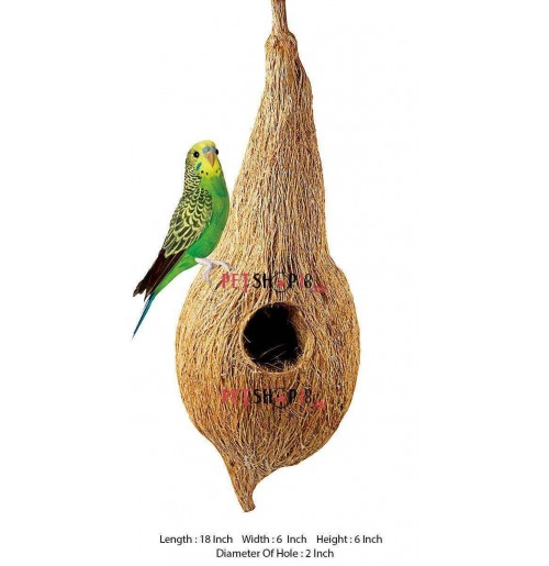 Exotic Coconut Bird Nest